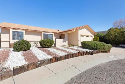 Tucson Single Family Home For Sale: 9757 N Sherbrooke Street