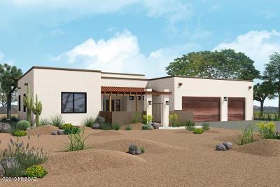 Tucson Single Family Home For Sale: 5380 W Wild Desert Lane