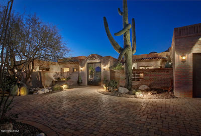 Tucson Single Family Home For Sale: 7743 N Ancient Indian Drive