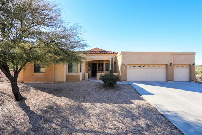 Pima County, Pinal County Single Family Home Active Contingent: 3276 E Limestone Drive