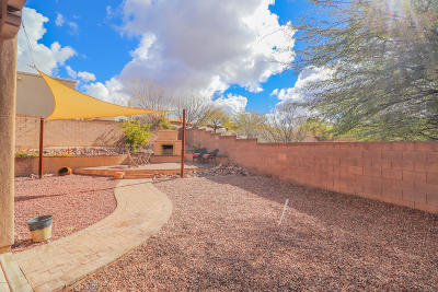 Vail Single Family Home For Sale: 10763 S Black Cactus Trail