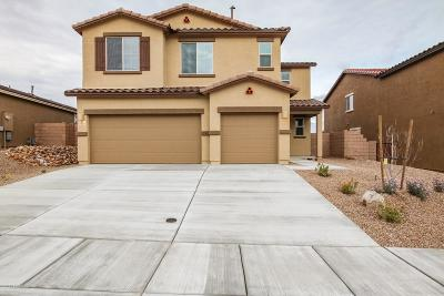 Pima County, Pinal County Single Family Home Active Contingent: 17252 S Alder Brooke Way S