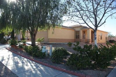 Pima County Single Family Home For Sale: 5446 S Via Florena