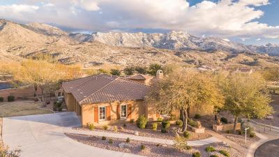 Tucson Single Family Home For Sale: 36297 S Aspen Lane