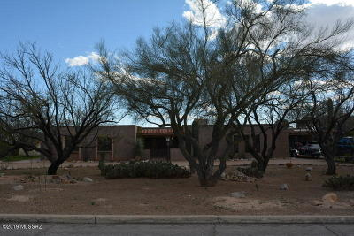 Tucson Single Family Home For Sale: 8962 E Indian Canyon Road