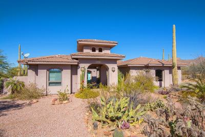 Tucson Single Family Home For Sale: 11250 W Calle Pima