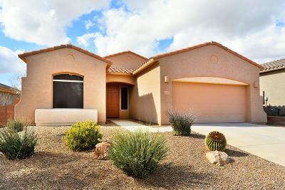 Single Family Home For Sale: 12591 N Gentle Rain Drive