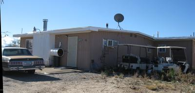 Sahuarita Single Family Home For Sale: 6420 W Pinto Road