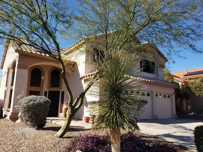 Oro Valley Single Family Home For Sale: 11321 N Chynna Rose Place