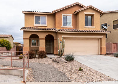 Paseo Del Rio Single Family Home For Sale: 1672 W Green Thicket Way