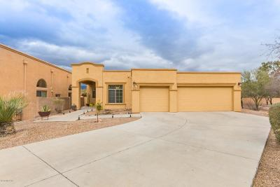 Tucson Single Family Home For Sale: 1118 N Copper Spur Court