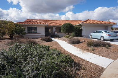 Oro Valley Single Family Home For Sale: 790 E Desert Glen Drive