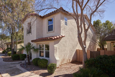 Tucson Single Family Home For Sale: 2787 N Saramano Lane