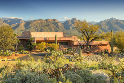 Tucson Single Family Home For Sale: 8501 E Tourmaline Drive