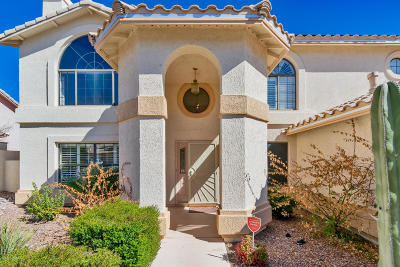 Oro Valley Single Family Home Active Contingent: 12450 N Copper Queen Way