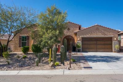 Marana Single Family Home For Sale: 6572 W Whispering Windmill Lane