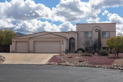 Tucson Single Family Home For Sale: 1917 W Placita Rancho Naranjo