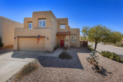 Tucson Single Family Home For Sale: 225 N Fenceline Drive
