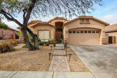 Tucson Single Family Home Active Contingent: 7447 N Bradstreet Drive