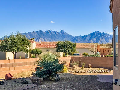 Green Valley Single Family Home Active Contingent: 2241 S Pecan Vista Drive