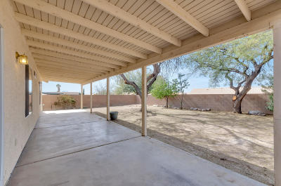Tucson Single Family Home For Sale: 8058 S Old Canyon Avenue