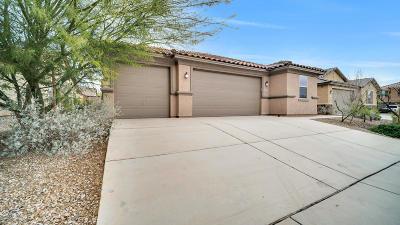 Marana Single Family Home For Sale: 11613 W Granville Drive