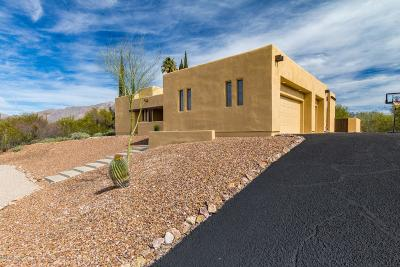 Tucson Single Family Home For Sale: 4210 N Swan Road
