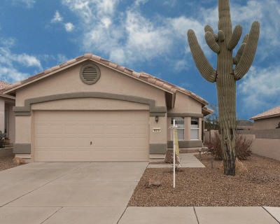Tucson Single Family Home For Sale: 9315 N Painted Sky Drive