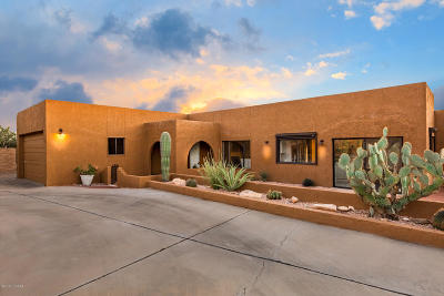 Tucson Single Family Home For Sale: 6801 N Green Mountain Place