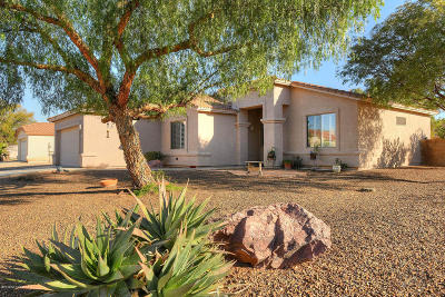 Tucson Single Family Home For Sale: 8598 E Esselmont Drive