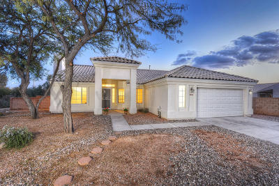 Tucson Single Family Home For Sale: 9245 N Shannon Road