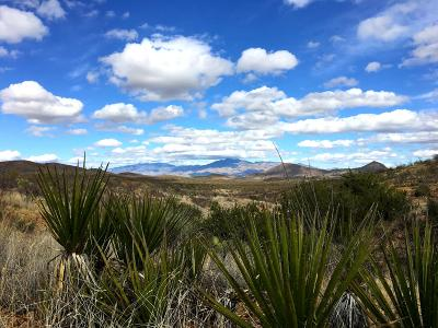 Vail Residential Lots & Land For Sale: 19500BLK S Sonoita Highway