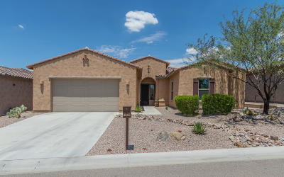 Marana Single Family Home For Sale: 6616 W Whispering Windmill Lane