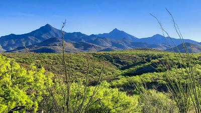 Rio Rico Residential Lots & Land For Sale: 58 Camino Tango #93/3