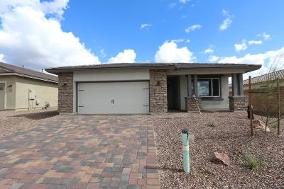 Marana Single Family Home For Sale: 14124 N Silverleaf Lane N