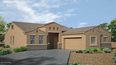 Marana Single Family Home For Sale: 9836 N Howling Wolf Road