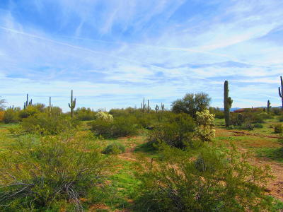 Residential Lots & Land For Sale: S Kit Fox Trail #5 acres