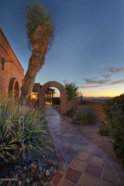 Tucson Single Family Home For Sale: 4201 N Camino De Carrillo
