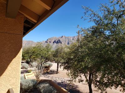 Tucson Condo Active Contingent: 6651 N Campbell Avenue #206
