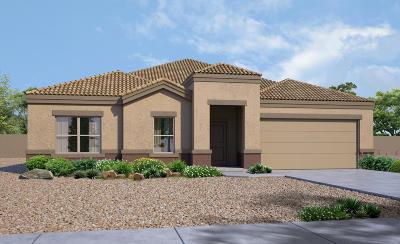 Marana Single Family Home For Sale: 9383 W Desert Bighorn Trail