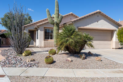 Single Family Home For Sale: 9337 N Sombrero Canyon Drive