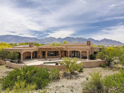 Oro Valley Single Family Home For Sale: 13841 N Old Forest Trail