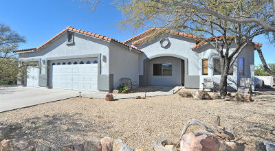 Pima County, Pinal County Single Family Home For Sale: 1029 N Deep Rock Drive