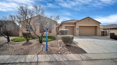Vail Single Family Home For Sale: 9646 S San Esteban Drive