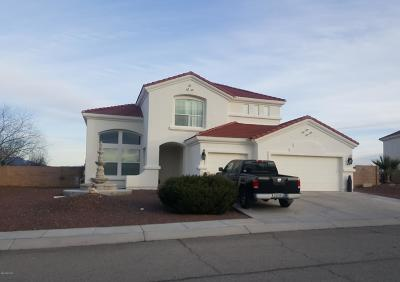 Rio Rico Single Family Home For Sale: 875 Manzanilla Way