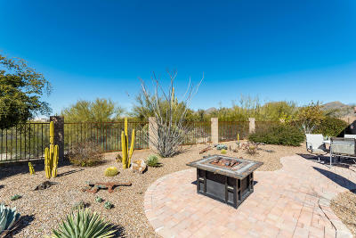Marana Single Family Home For Sale: 12481 N Golden Mirror Drive