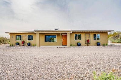 Oro Valley Single Family Home For Sale: 11771 N 1st Avenue