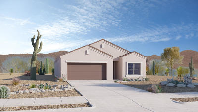 Marana Single Family Home For Sale: 10364 N Blue Roan Court