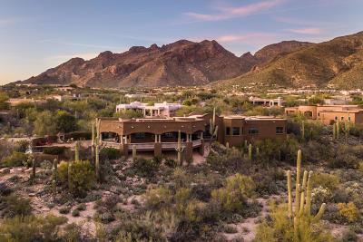 Pima Canyon Estates (1-176) Single Family Home Active Contingent: 7258 N Ancient Mesa Place