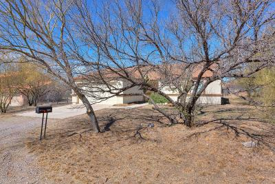 Rio Rico Single Family Home For Sale: 242 Camino Cholula